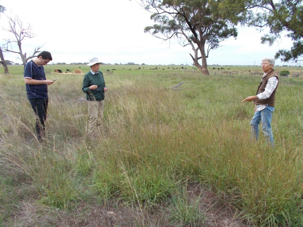 Nathan, Frances,  Irene with Redleg Grass after flooding upper Pinkerton Mar 2020